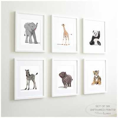 Baby Animal Nursery Art Prints (Set of 6) - Etsy