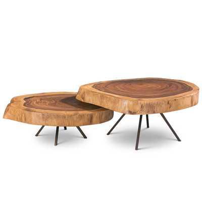 Ie Series 2 Piece Nesting Coffee Tables - Wayfair