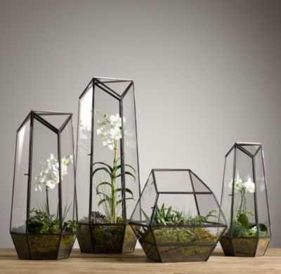 FACETED GLASS TERRARIUM - RH