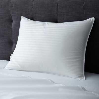 Classic Pillow Insert - Down - West Elm
