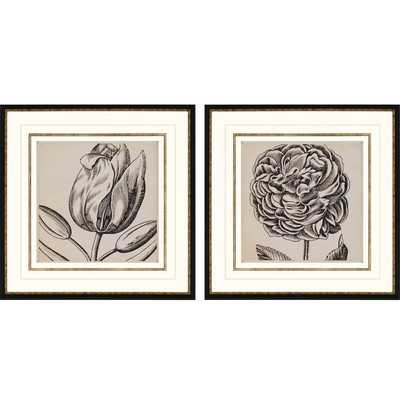 Graphic Floral II 2 Piece Framed Painting Print Shadow Box Set - Wayfair