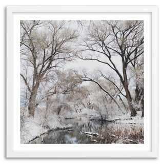 Kevin Russ, Snowy Forest Canopy - framed - One Kings Lane