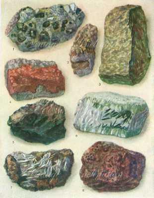 Vintage Minerals Print Antique Gems Precious Stones 1940s-10 1/4 x 7 3/4-Unframed - Etsy
