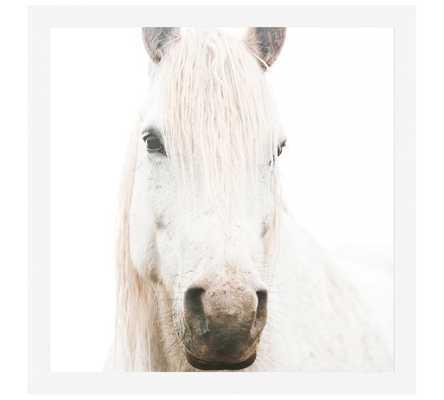"""WHITE ON WHITE HORSE FRAMED PRINT BY JENNIFER MEYERS - 48"""" x 48"""" - FRAMED - Pottery Barn"""