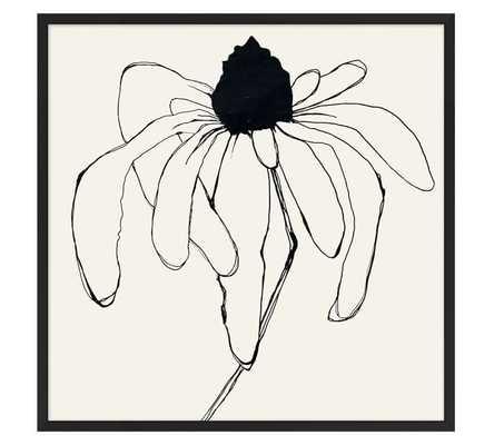 "Picked Daisy Print - 43"" x 43"" - Matte Black Frame - Pottery Barn"