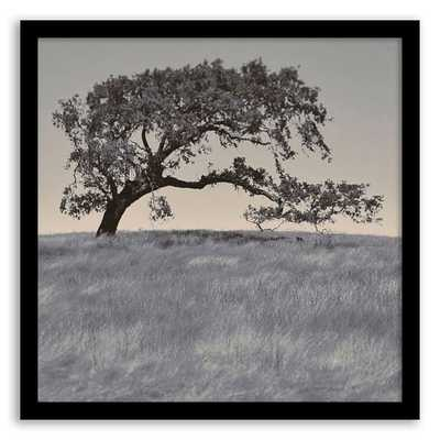 Twenty20 Wall Art - Rush Creek Tree - West Elm