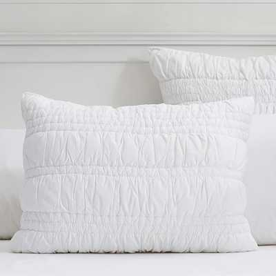 Ruched Sham - Standard - Pottery Barn Teen