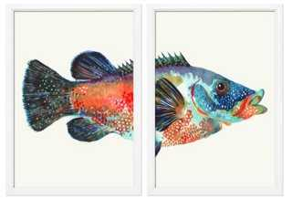 New England Fish I Diptych - Set of 2 - One Kings Lane