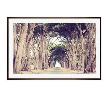 TREE AVENUE - 42x28, Framed - Pottery Barn
