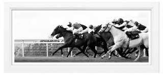 Horse Race - One Kings Lane