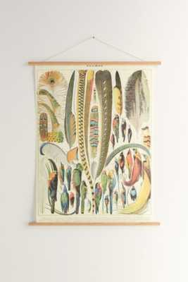 Hanging Plumes Art Print - Urban Outfitters