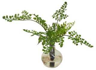 Maidenhair Fern in Vase, Faux - One Kings Lane