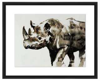 Rhino Shadowbox - One Kings Lane