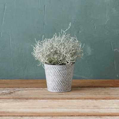 Connect the Dots Pot - Small - shopterrain.com