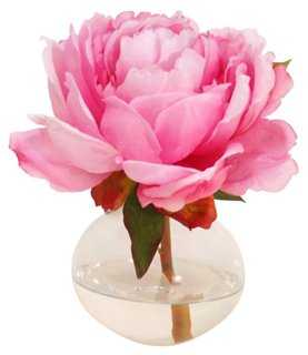 "7"" Peony in Bubble Vase, Faux - One Kings Lane"