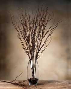 Birch Branch - petals.com