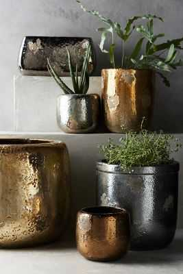 Metallic Crackle Herb Pot - Large round - Anthropologie