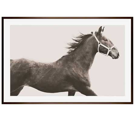 Vintage Horse Framed Print by Jennifer Meyers - Pottery Barn
