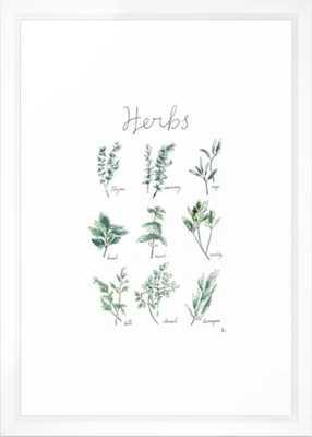 Herbs Botanical Illustration Framed Art Print - Society6