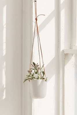 Loren Leather Ceramic Hanging Planter - Urban Outfitters