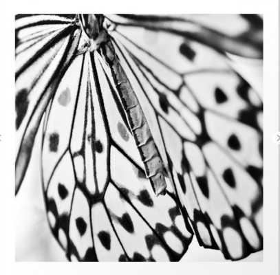 Butterfly Wings Art Print 8 x 8 - Society6