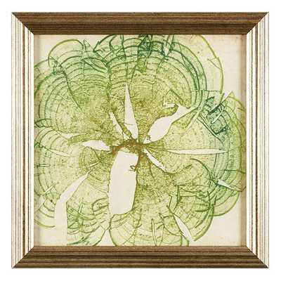 Ballard Designs Petite Vintage Seaweed Art, VIII - Ballard Designs