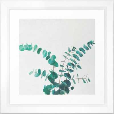 Eucalyptus II Framed Art Print - Society6