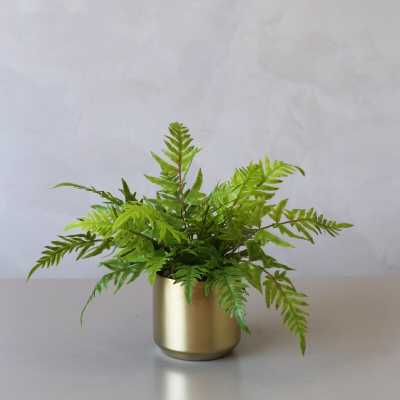 Potted Artificial Brake Desktop Palm Plant in Vase - Wayfair
