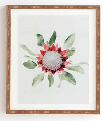 "KING PROTEA FLOWER II, 11"" X 13"" Bamboo Framed Print - Wander Print Co."