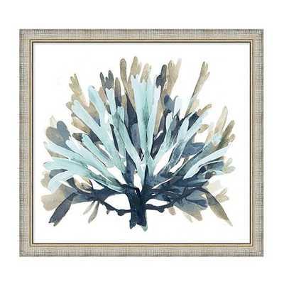 Seaside Coral Art - Blue - Print 1 - Framed - Ballard Designs