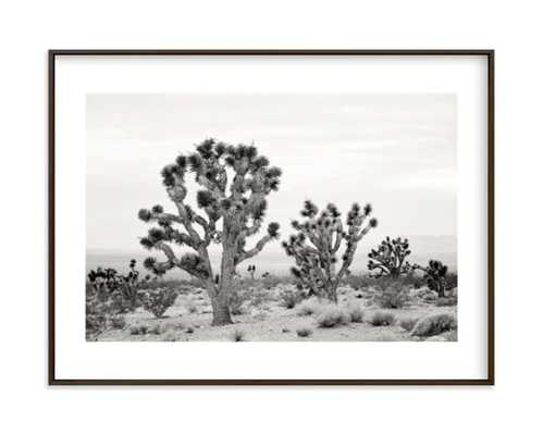 Joshua Tree In September - Minted