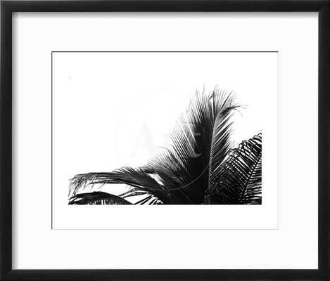 Palms 2 - art.com
