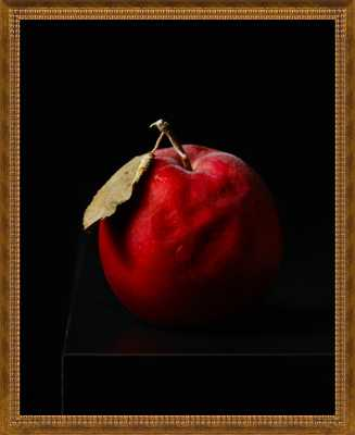 "Aged Apple - 22.5x27.5"" - Gold Double Bead Wood Frame without Matte - Artfully Walls"