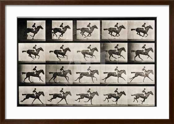 jockey-on-a-galloping-horse-plate-627-from-animal-locomotion-1887 - art.com