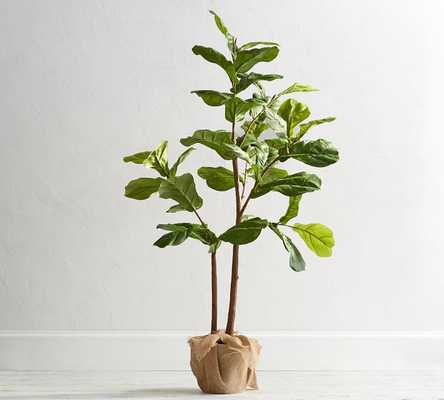 Faux Potted Fiddle Leaf Tree, Medium - 5ft - Pottery Barn