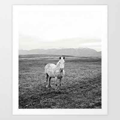Appaloosa Horse | Western Art Art Print - Society6