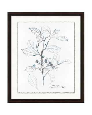 BLUE LEAF SKETCH 1 Framed Art - McGee & Co.