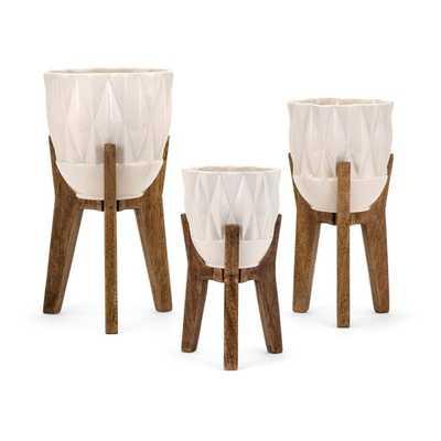 Ella Elaine Amara Vases on Wood Stands - Set of 3 - Mercer Collection