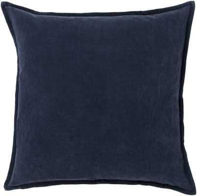 Samara Velvet Pillow Cover - AllModern