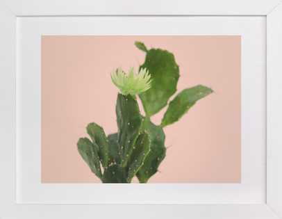 pink cactus - Minted