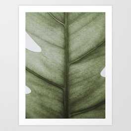 Monstera, Leaf, Plant, Tropical, Scandinavian, Minimal, Modern, Wall art Framed Art Print - Society6