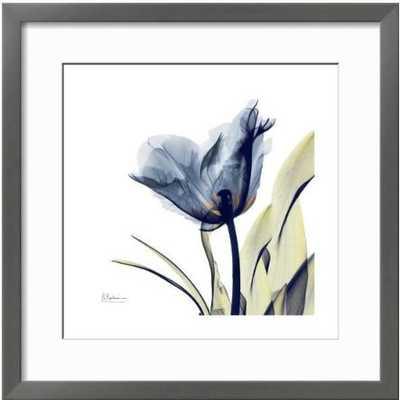 Tulip Whisper Art Print - art.com
