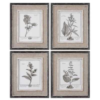 Ladouceur 4 Piece Framed Graphic Art Set - Wayfair