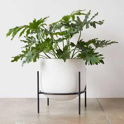 Stratus Standing Planter, Large Short - West Elm