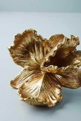 Gilded Bloom Decorative Object - Amaryllis - Anthropologie