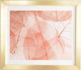 """SUN BLEACHED APRICOT Gold Framed Wall Art - 11"""" x 13"""" - Wander Print Co."""