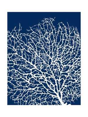 Navy Coral I Sabine Berg Print - art.com