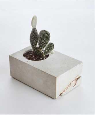 VALE CONCRETE BLOCK PLANTER WITH CACTUS, GRAY AND GOLD - Lulu and Georgia