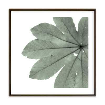 "Leaf in Green 11""x11"" - black Frame - White Border - Minted"