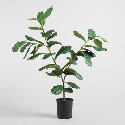 5 Ft Faux Fiddle Leaf Fig PLANT - (basket not included) - World Market/Cost Plus